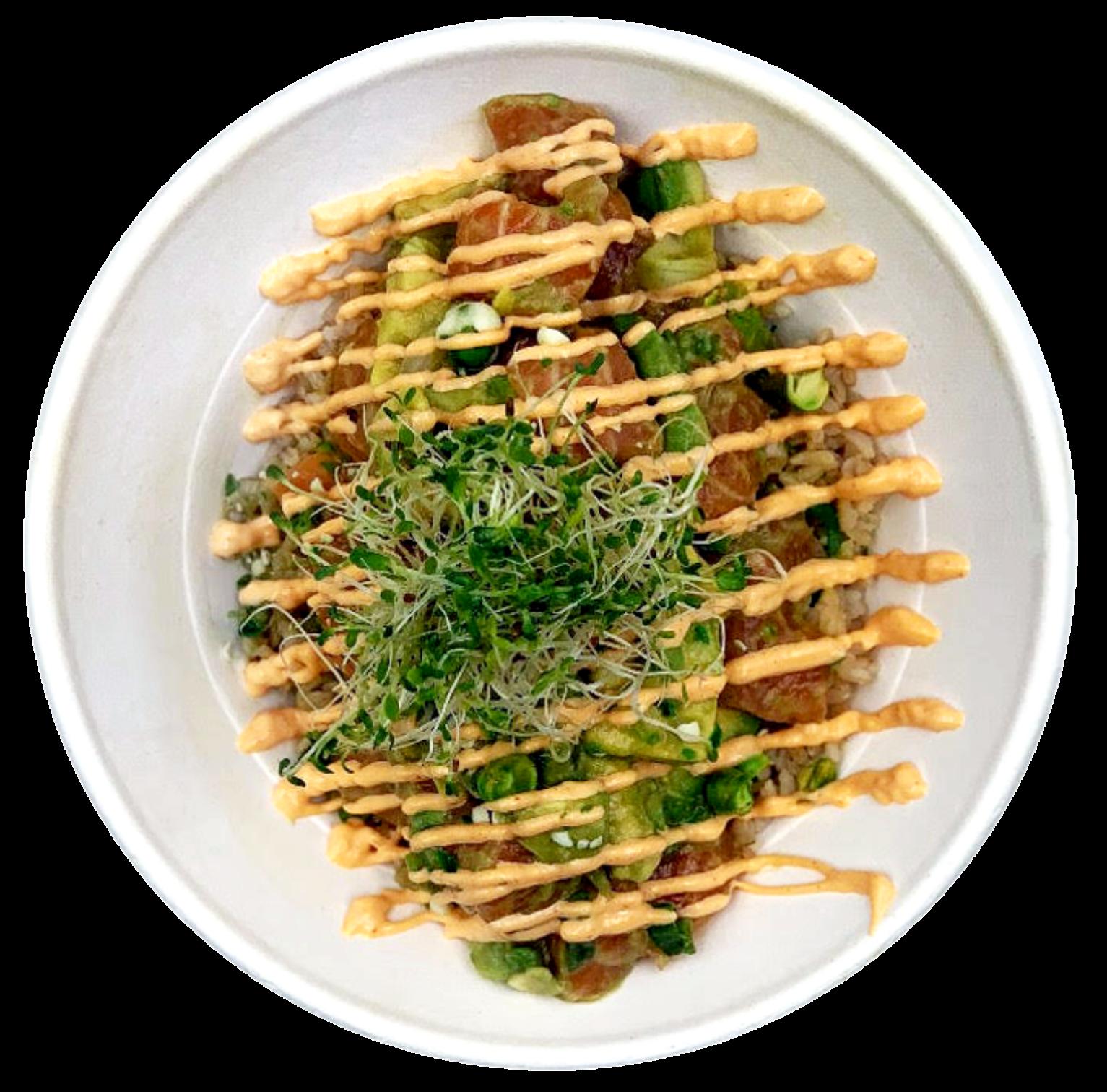 Salmon Avocado Bowl