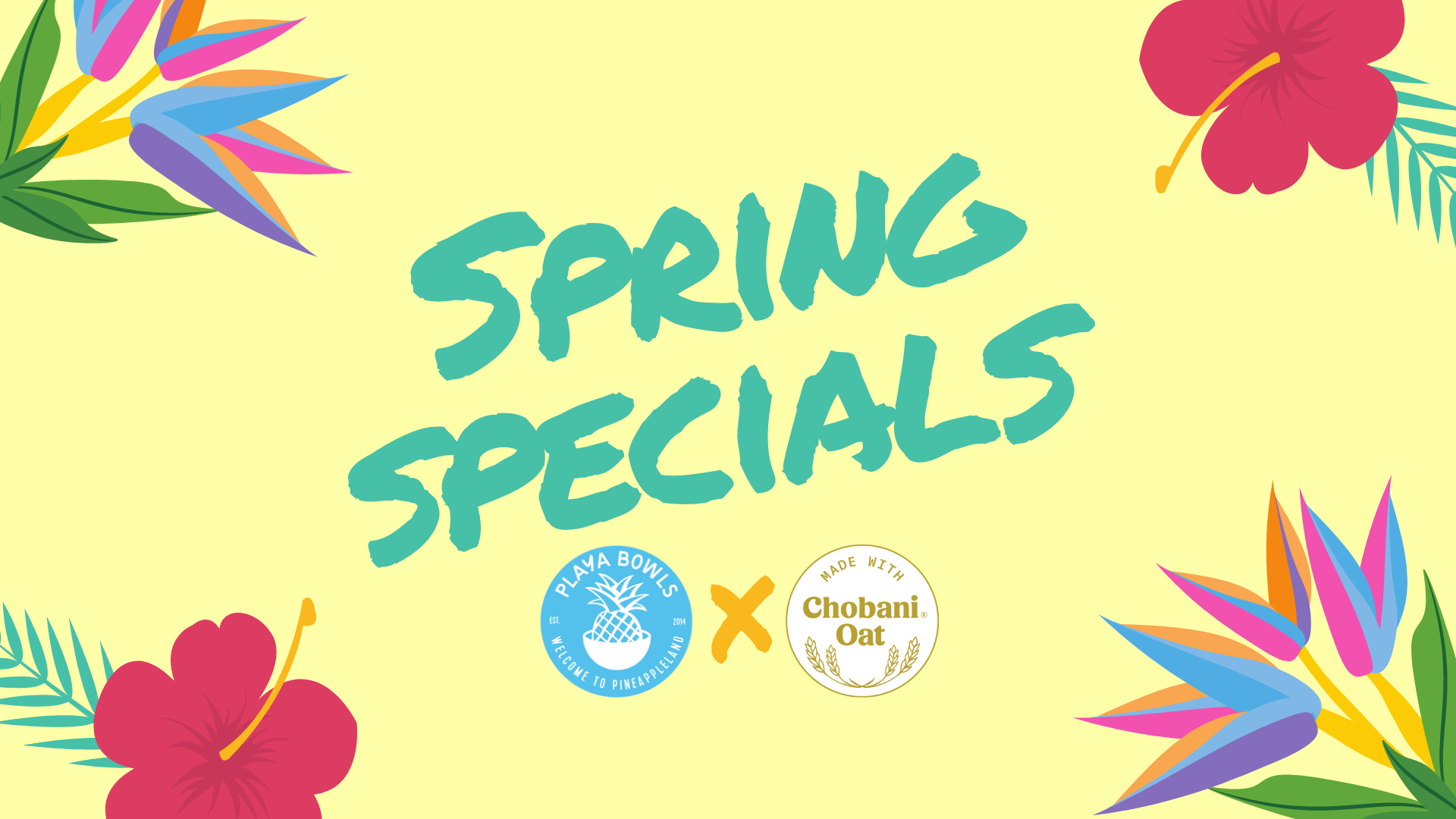 Spring Specials are BACK!